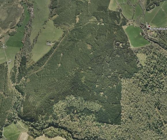 Lion Geoglyph Scotland 4