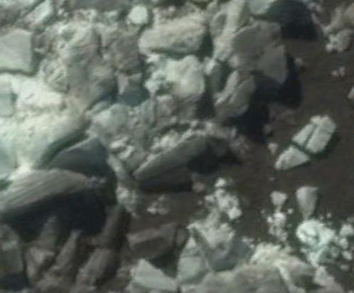 """Reclining humanoids? Kerguelen Islands 49°22'1.23""""S 69°12'40.02""""E"""